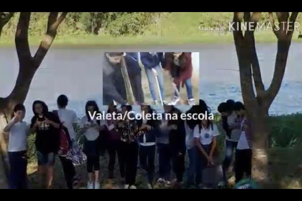 REFLEXOS DA PARTICIPAÇÃO NO PROGRAMA GLOBE