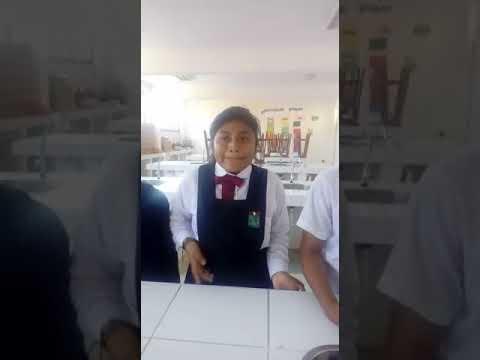 CREANDO ALIANZAS ESTRATÉGICAS CON MI COMUNIDAD PARA PREVENIR ENFERMEDADES CAUSADAS POR EL MOSQUITO
